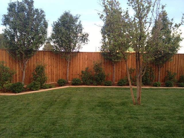 Fence Repair in Mansfield